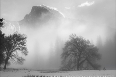 half-dome-and-early-morning-fog-