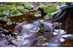 creek-arthur-river-large
